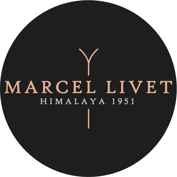 logo final MARCEL LIVET la collection des skis en bois